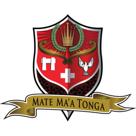 Cheap Tonga rugby Jersey